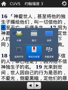 BlackBerry in Chinese Bookmark Popup