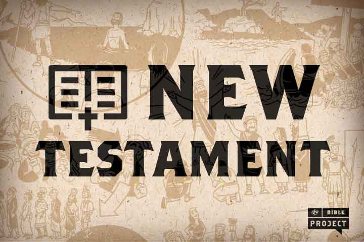 new testament There is a set of exciting and demanding undergraduate papers in new  testament, as well as a thriving postgraduate community new testament study  in.