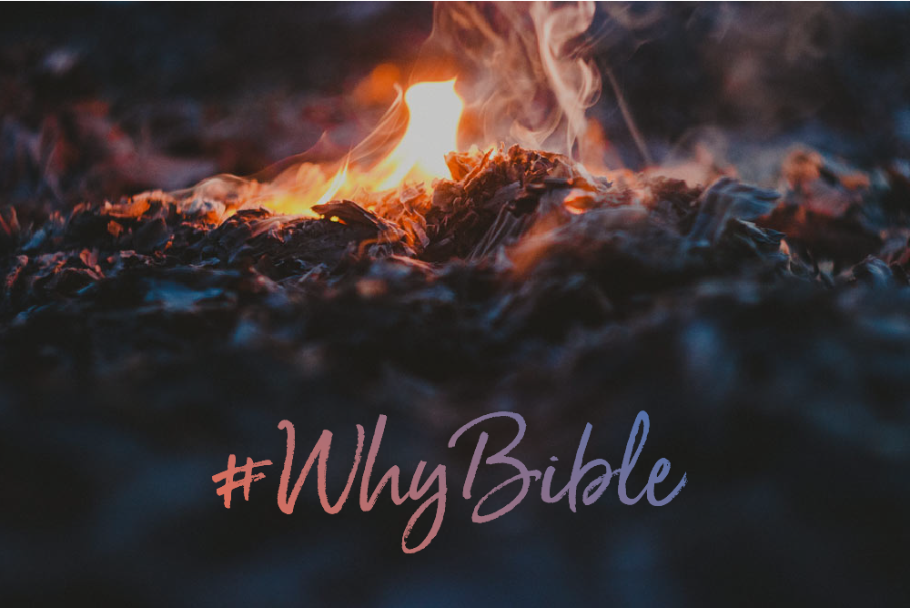 #WhyBible